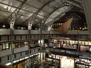 The Pitt-Rivers museum
